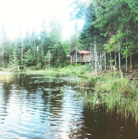 """Private  """"Pristine Lake"""" of South Algonquin"""