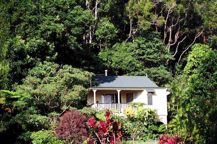 The Falls Montville Secluded Rainforest Cottage
