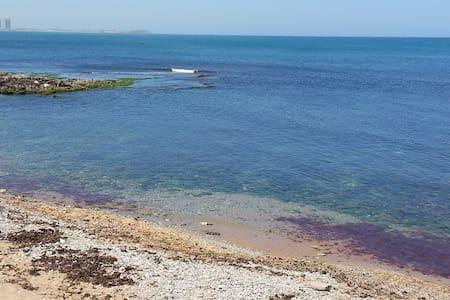 Superbe loft à deux pas de la plage - alger