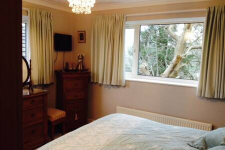 Double bedroom in family home. - Plymouth