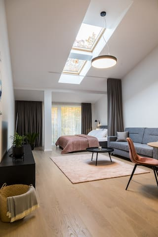 Apartments Laisve #7 (49 sq.m)