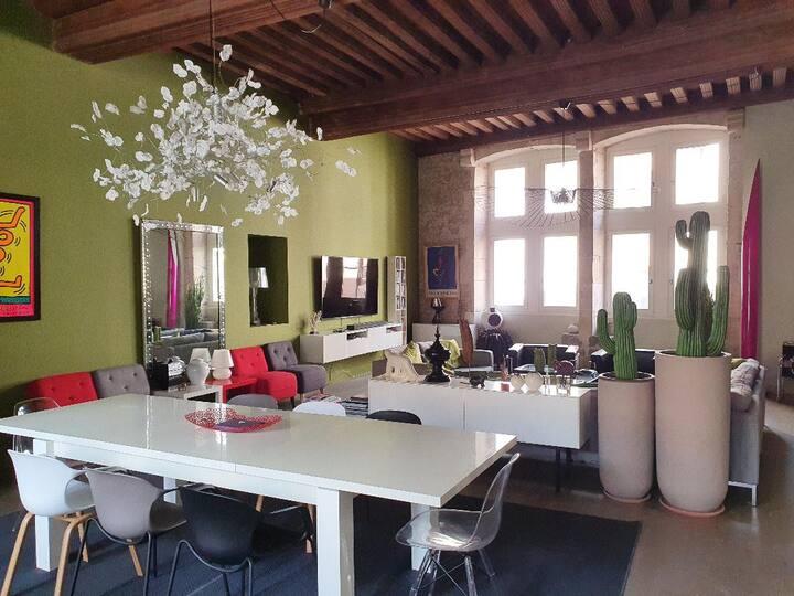 Amazing luxury apartment in Beaune