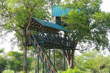 Tree House @ Bestlife Eco Resort Mattala - Hambantota