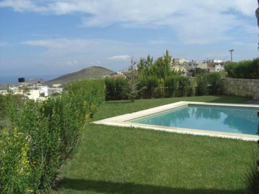 the pool -garden