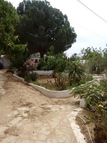 Petite villa de charme Hammamet - Hammamet - Villa