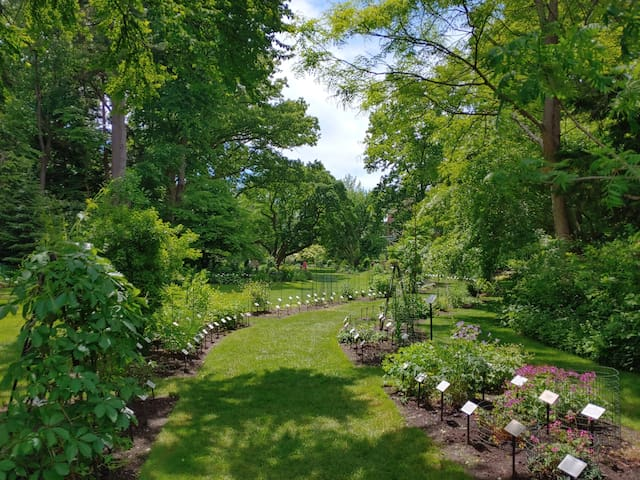 Beal Botanical Gardens at MSU.  15 minute walk south.  More than 3000 taxa of plants on 5 acres in the banks of the Red Cedar River