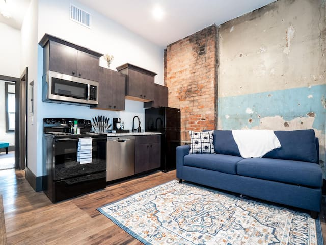 Amazing Apartment in the Heart of OTR- Unit 10