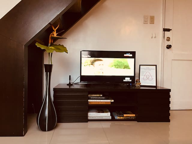 TV with standard channels