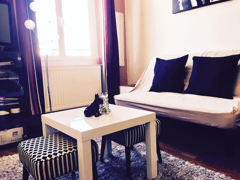 Pièce à vivre. Appartement très lumineux.