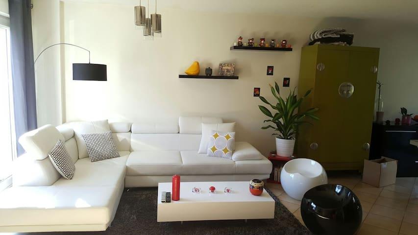 Jolie maison moderne avec jardin.