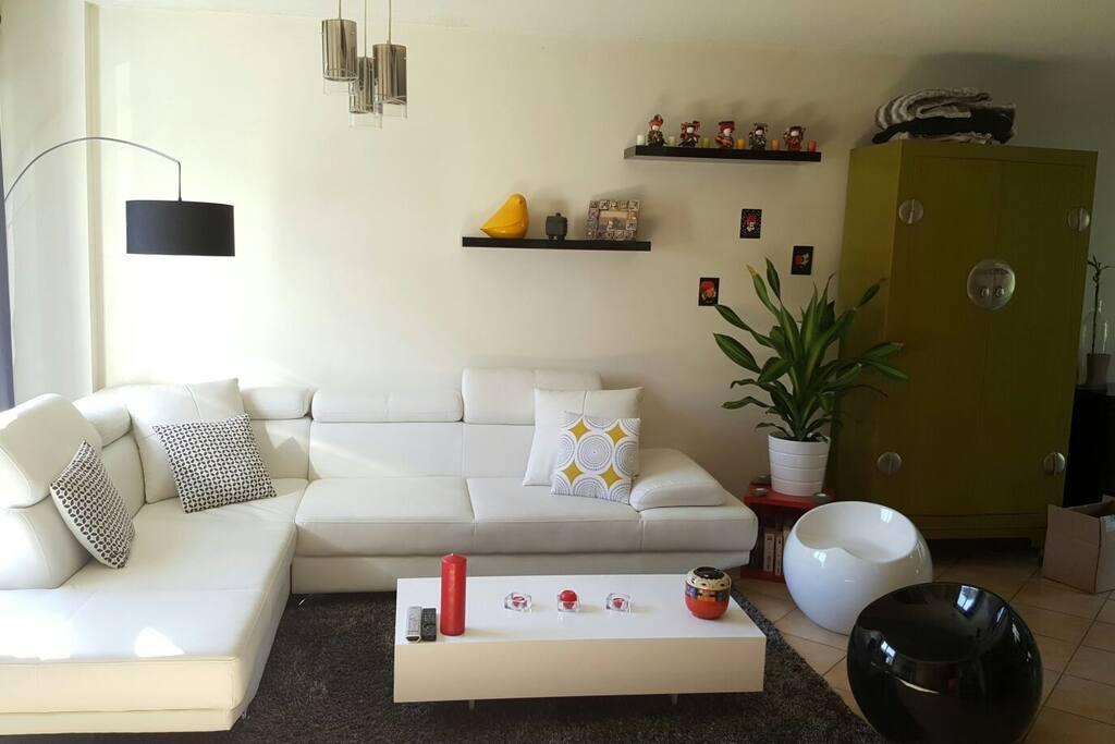 jolie maison moderne avec jardin. Black Bedroom Furniture Sets. Home Design Ideas