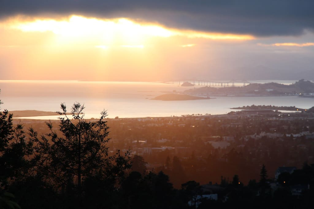 Retreat to a peaceful aerie above SF Bay or enjoy the bright lights and bustling metropolis below.