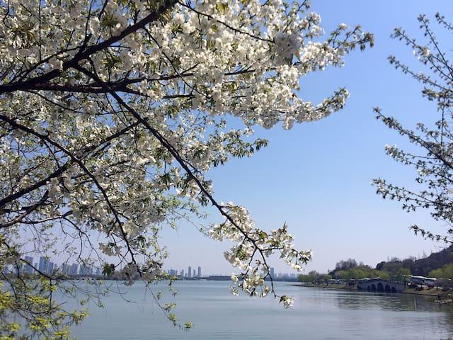 4月赏樱季!奢享三房公寓,鼋头渚,灵山拈花湾景区 - Wuxi - Apartment