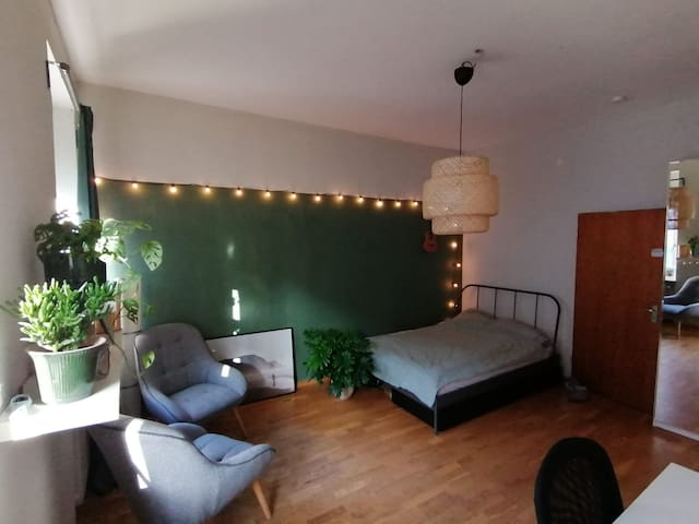 cozy, large student´s room in central Stühlinger