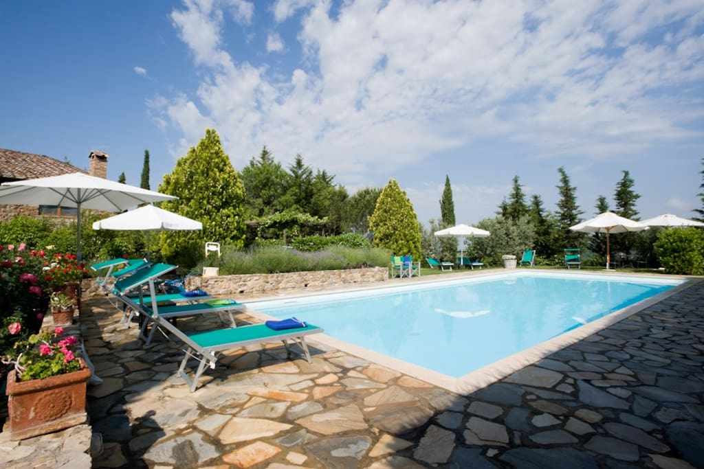 The 14x6 mt Pool with umbrellas and deckchairs