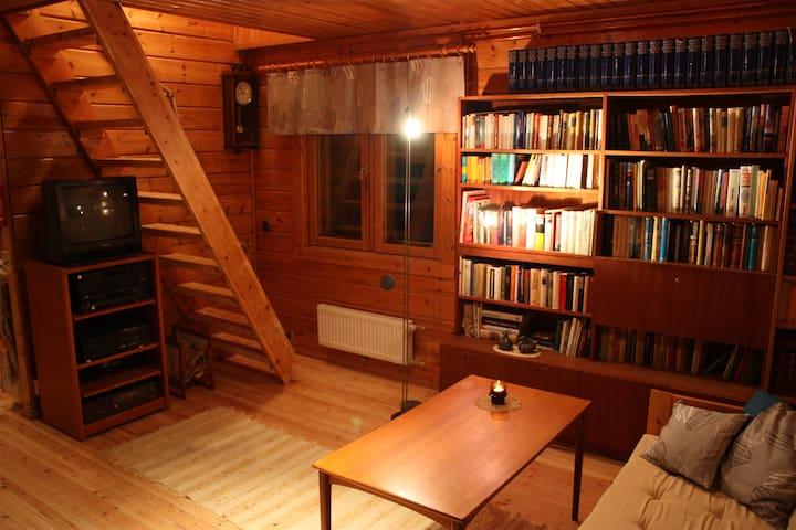 Olohuone, satelliitti- ja antenni-TV - Wohnzimmer mit deutschem Satelliten-TV - Living room with satellite television