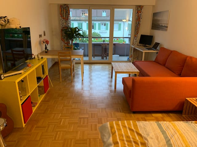 Cozy 1 Room flat close to the lake
