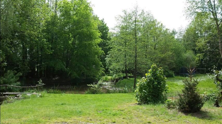 Vrijstaand chalet omringd door grote groene tuin.