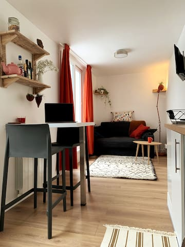 Cosy duplex with a patio at the city center