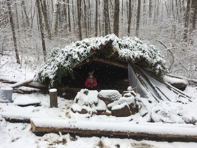 Bushcraft Shelter: Learn Primitive living skills