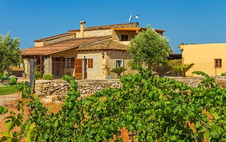 Nice house among vineyards - Binissalem - Vila