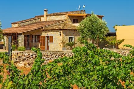 Nice house among vineyards - Binissalem - Vila
