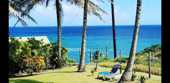 Coconut Breeze Beach house