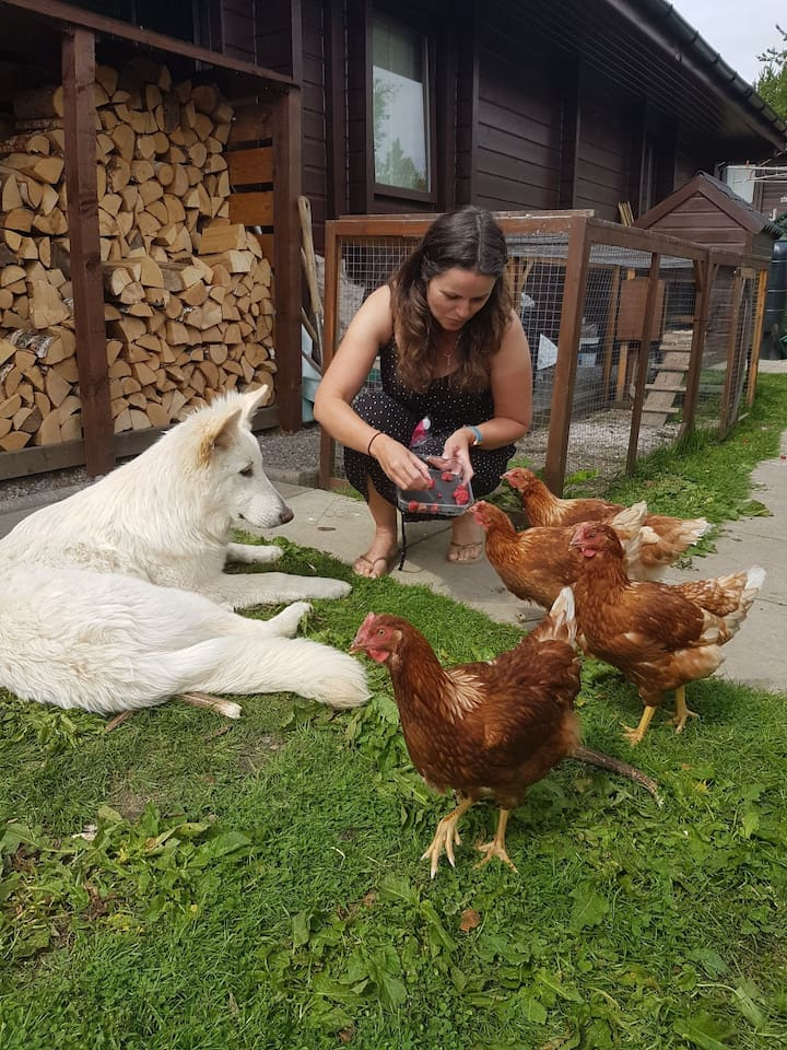 Jayne, Santi and our chickens