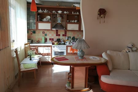 Cosy apartment near Sedanka city