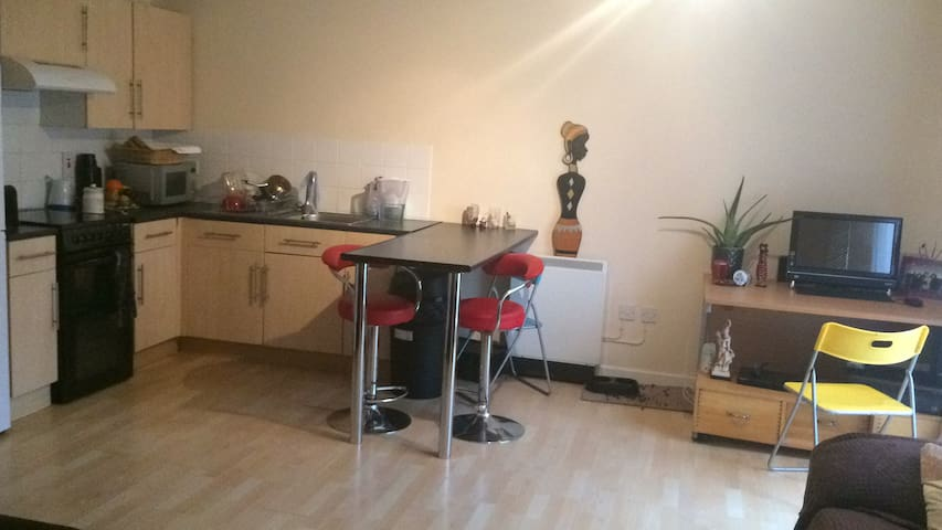 Double Room in Greenwich 30' to London Bridge - London - Apartment