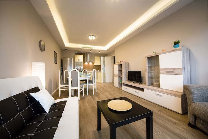 Spacious apartment in the heart od the city