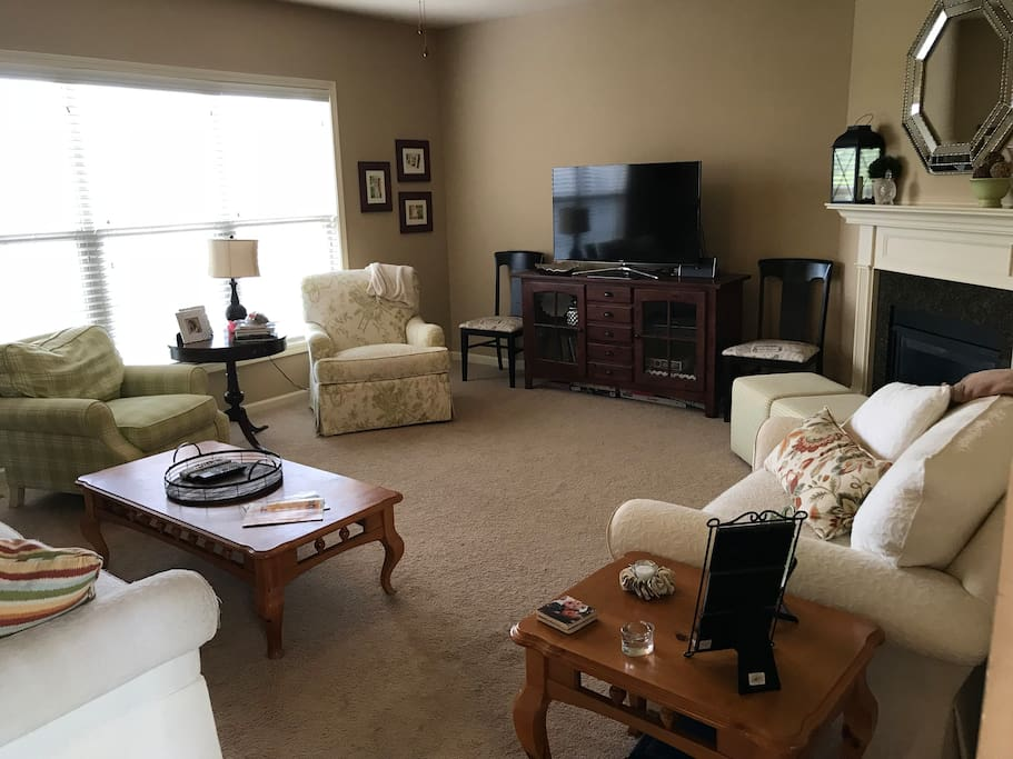 Comfy, open living room; sofa is a sleeper sofa. Board games in/under TV console. TV has Netflix, Amazon Prime, Hulu and a DVD player. Also a spare HDMI cable for your own device.