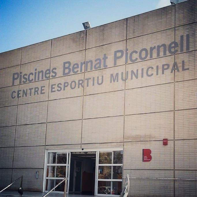 Piscines picornell barcelone for Piscines picornell
