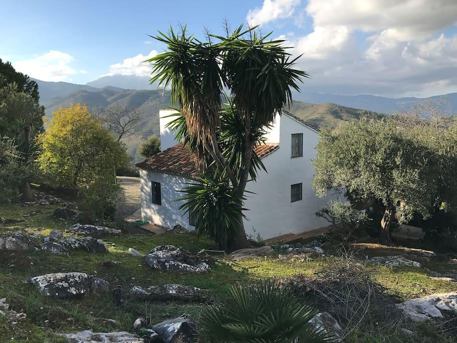 Huset i bergssluttningen, Casa Rosa