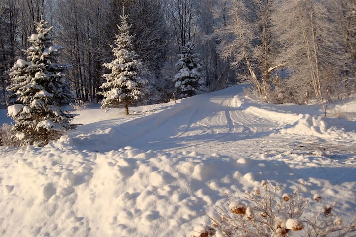 Driveway just after plowed