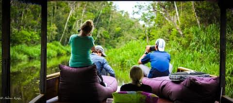 Privétour Orangutan: een woonboot in de jungle
