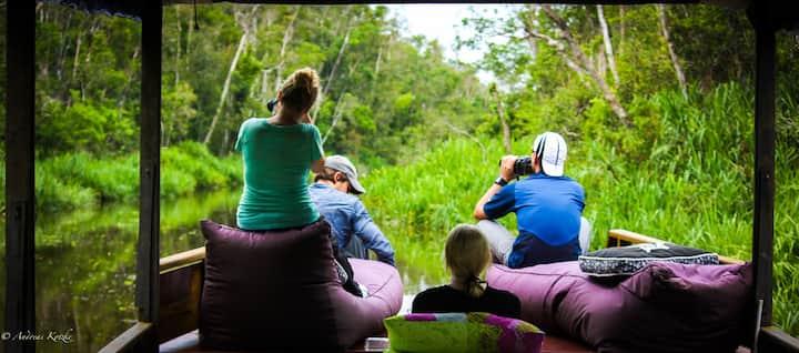 Orangutan Private Tour: A Jungle Houseboat Living