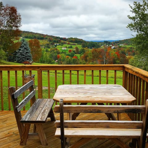 House up the hill with omg views - Margaretville - Haus