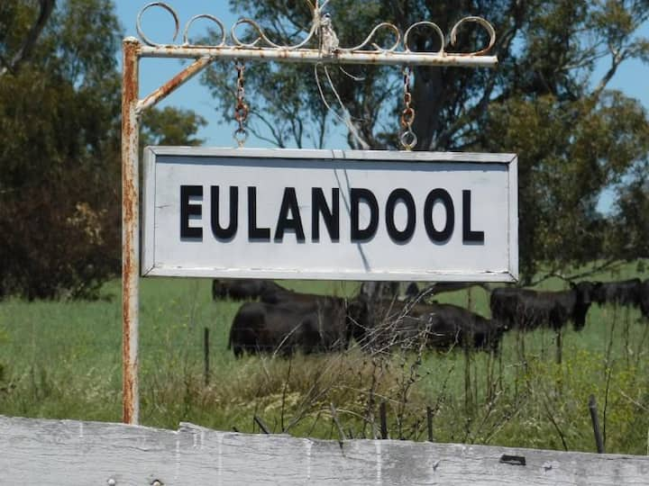 Eulandool Farmstay near Dubbo zoo feed poddy lambs