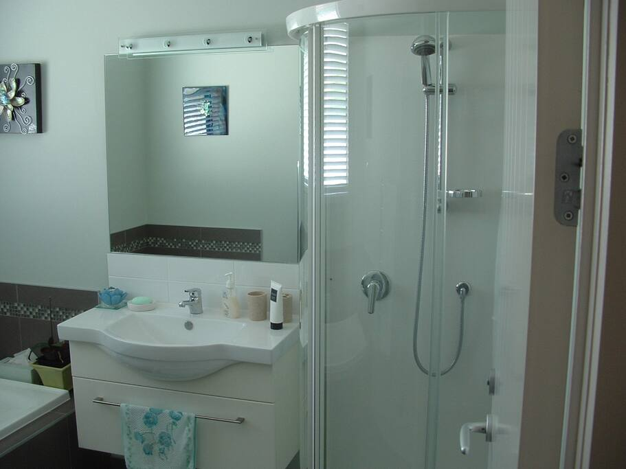Bathroom, shower & Bath-separate toilet