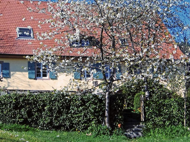 gemütliches Quartier nahe Basel und Freiburg - Malsburg-Marzell - Bed & Breakfast
