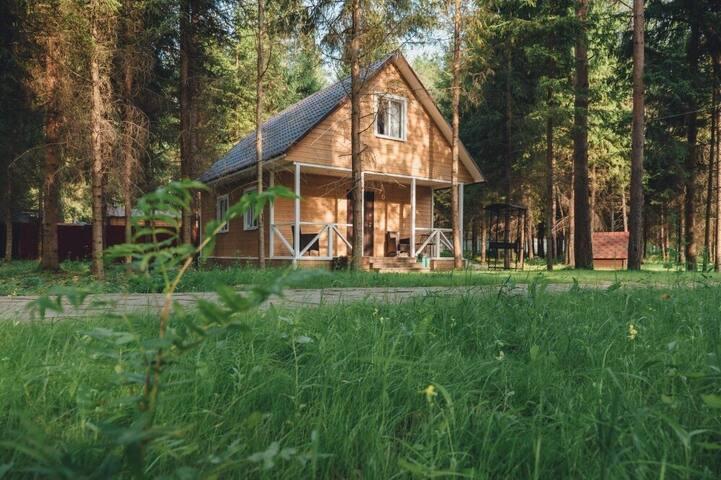 Коттедж для 6 человек в сосновом лесу