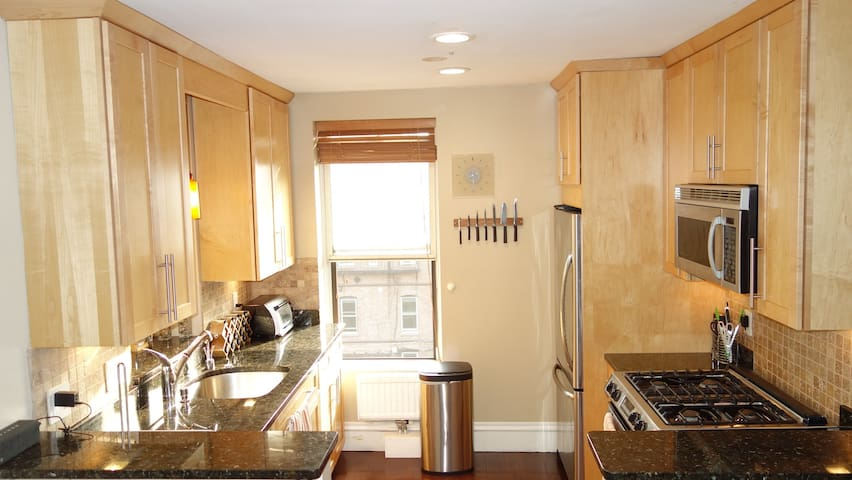 Gorgeous 3 bedroom in Boston's charming South End