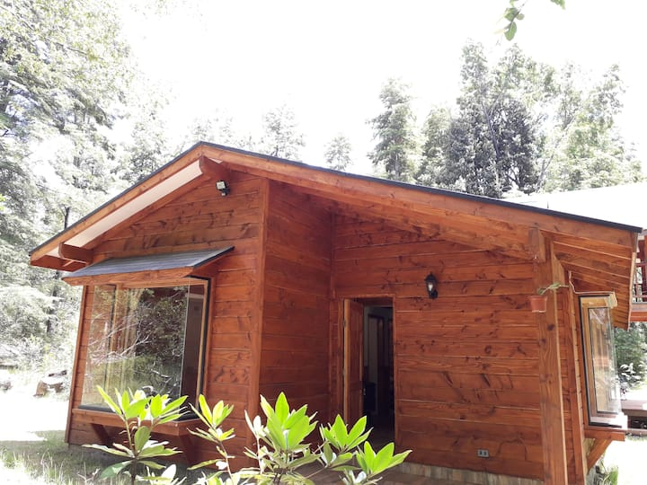 Cabaña Caburgua - Pucón (4 a 7 pax)