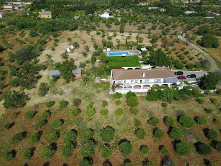 The finca and grounds