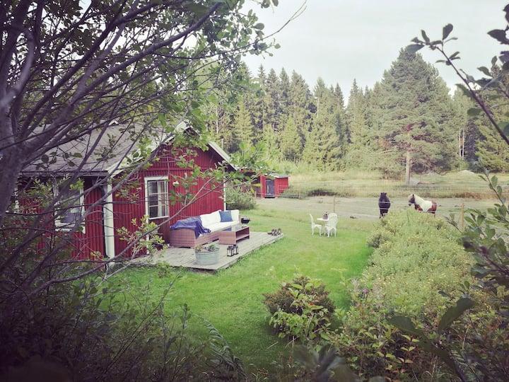 Gårdshus på hästgård med närhet till sjö och hav