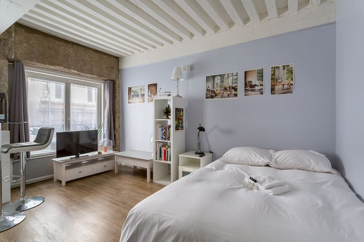 Furnished and modern studio apartment