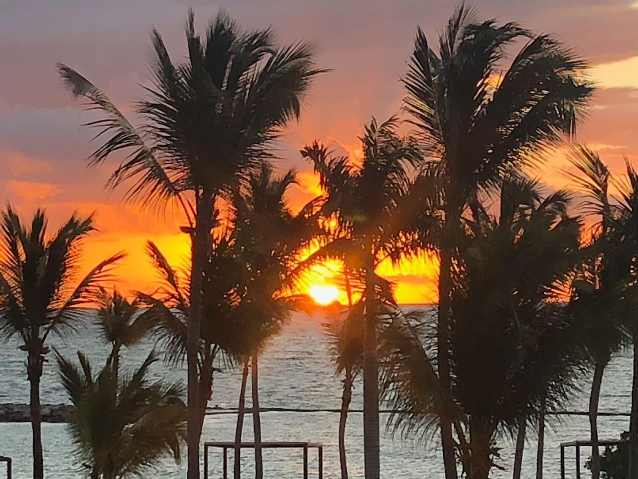 Awakening in Paradise.
