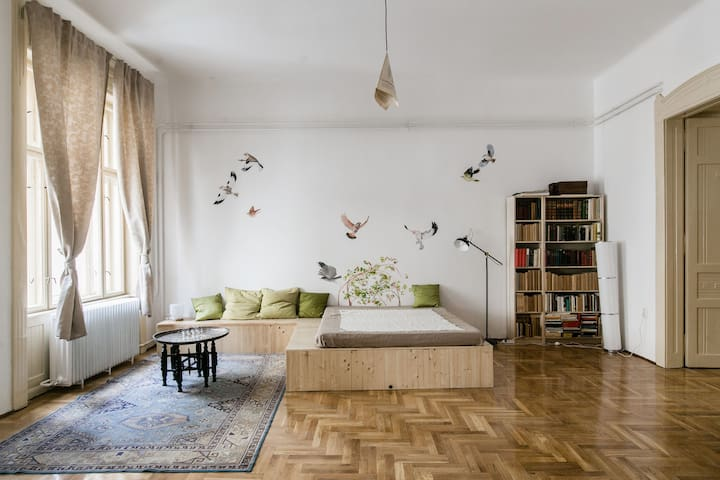 Amazing home near the Danube in the city center