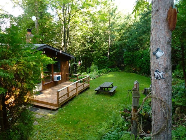 Beautiful Gull Lake Cottage For Rent! - Minden Hills - Hytte